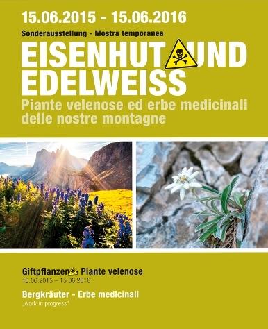 eisenhut___edelweiss